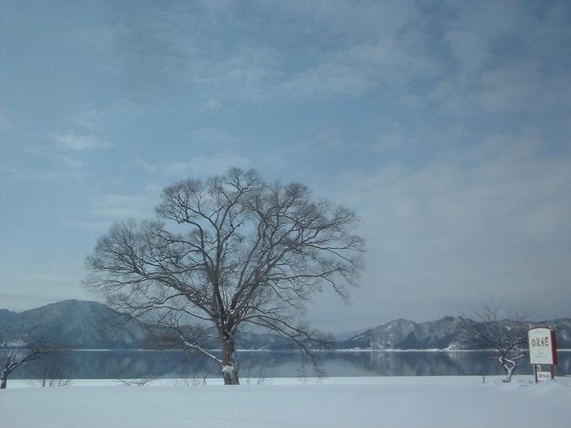 2010年2月8日 11:15